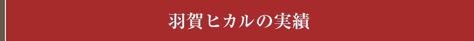 羽賀ヒカルの実績